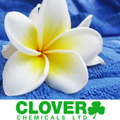 Clover Laundry Detergents