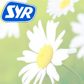 SYR Air Fresheners & Dispensers