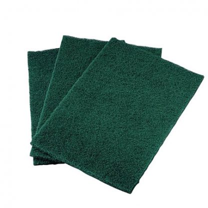 Everyday Green Scouring Pads 10pk